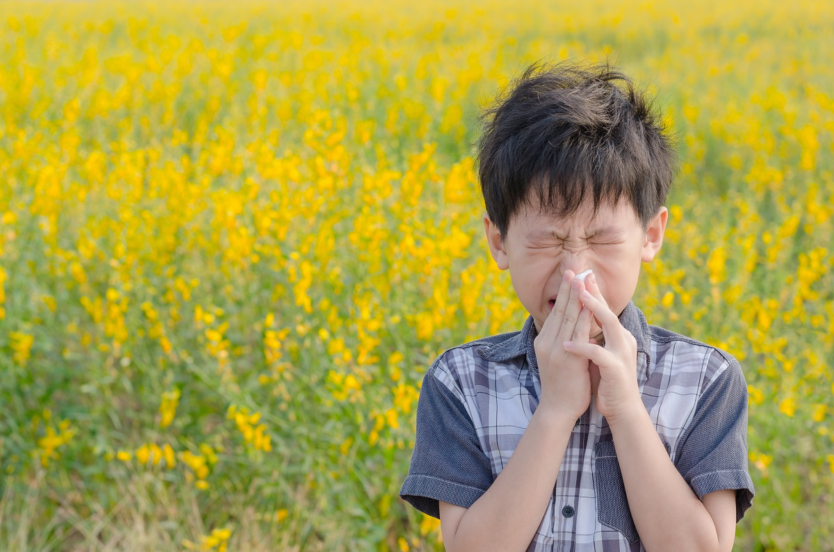 Avamys spray nasale