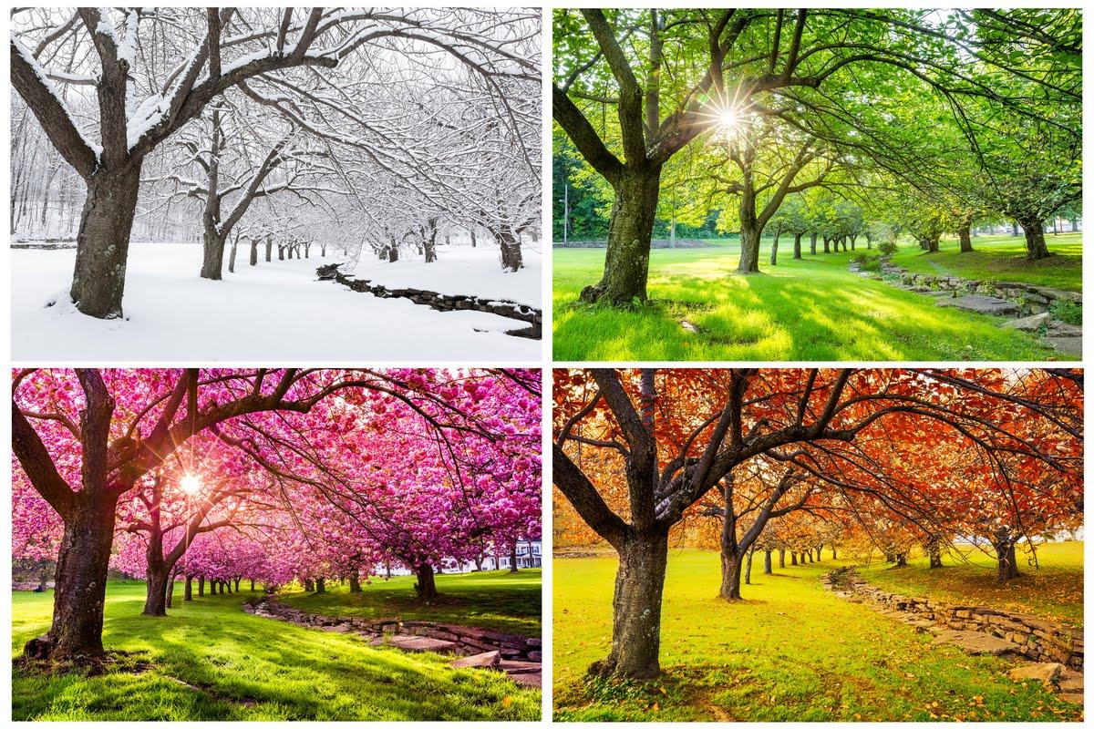 Cambio di stagione