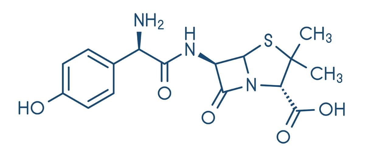 augmentin amoxicillina