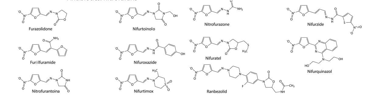 neo furadantin nitrofurani