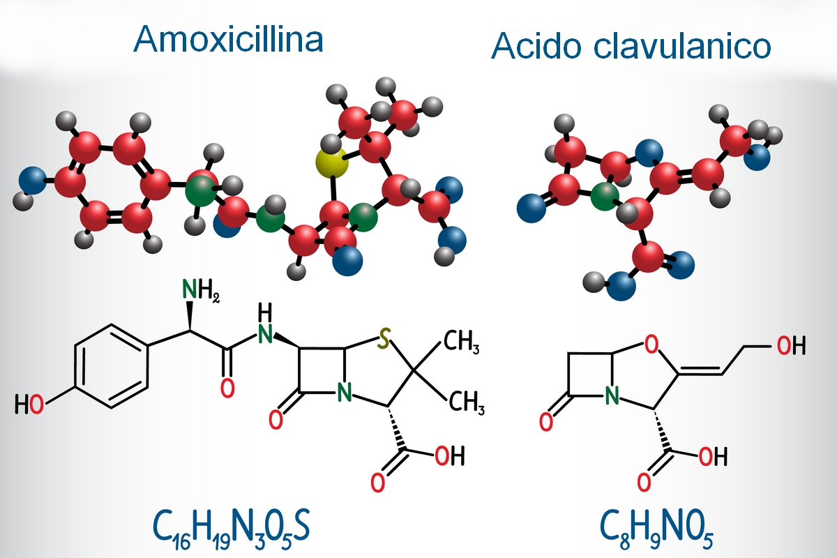Augmentin - amoxicillina e acido clavulanico