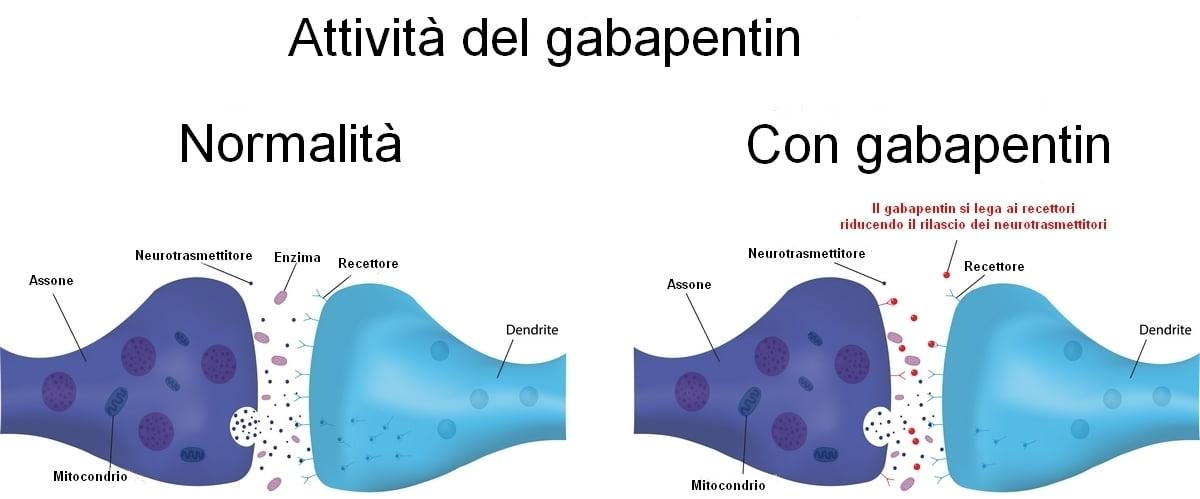Neurontin Gabapentin