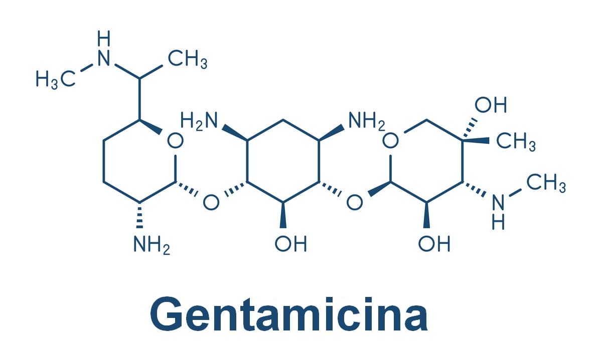 Gentalyn - gentamicina