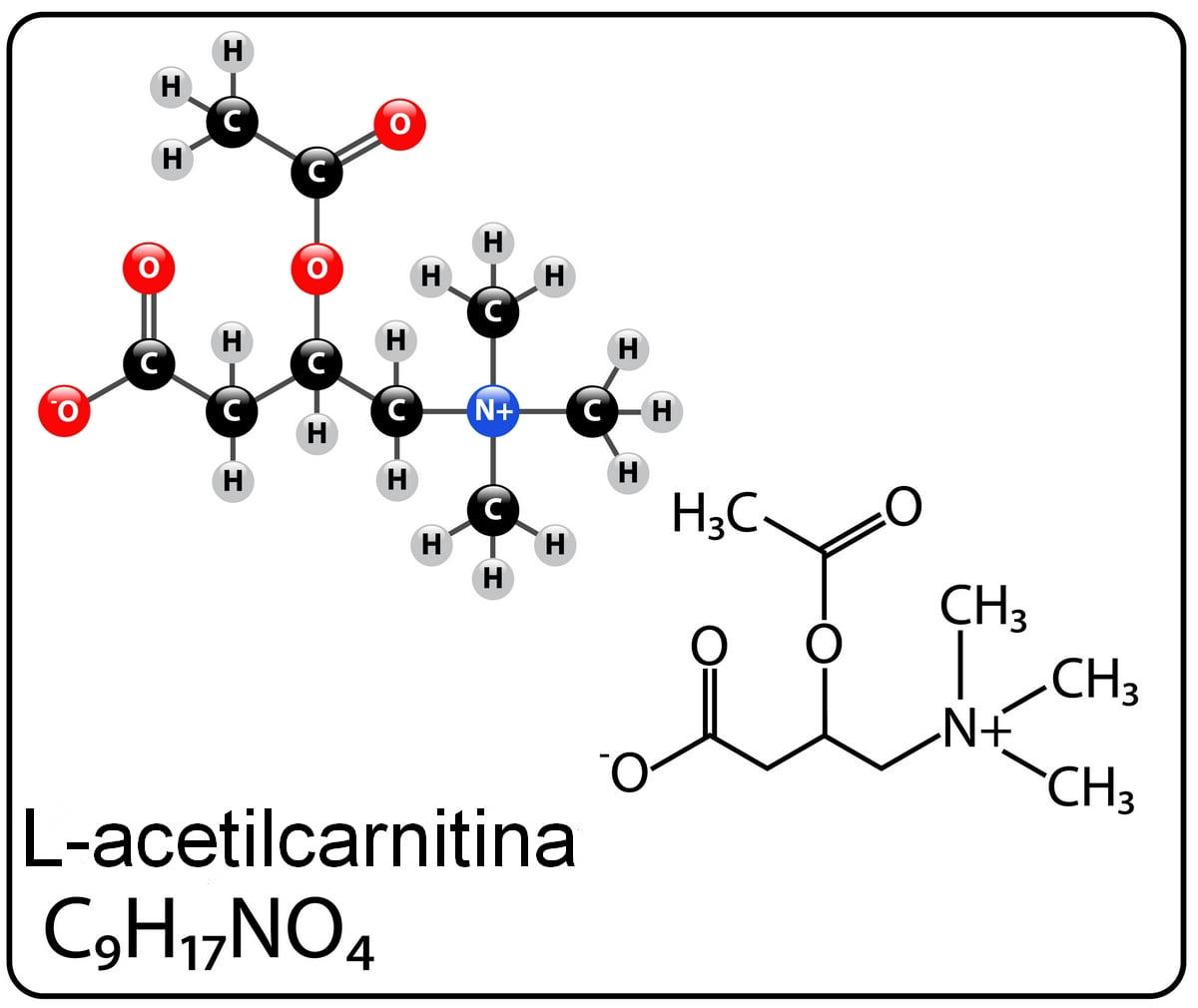 nicetile - l-acetilcarnitina
