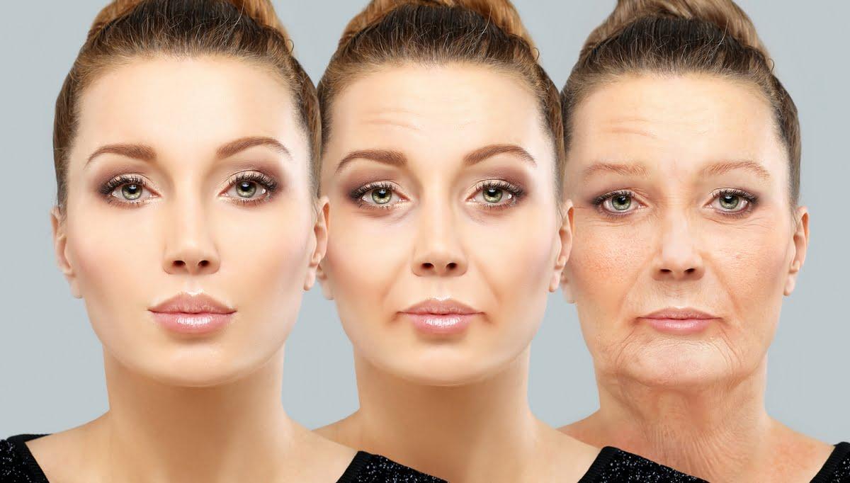 Teorie sull'invecchiamento